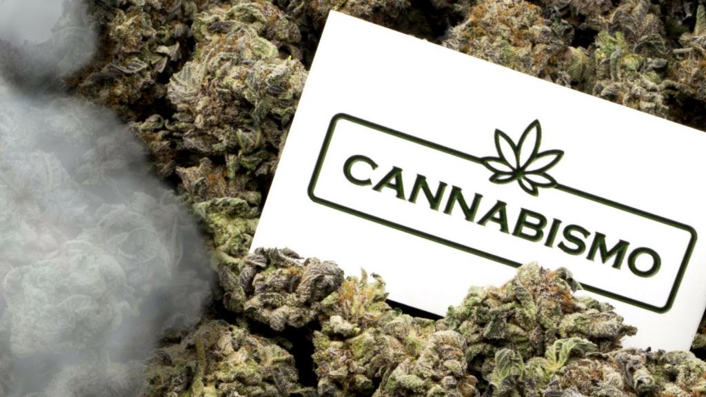 cannabismo cover photo